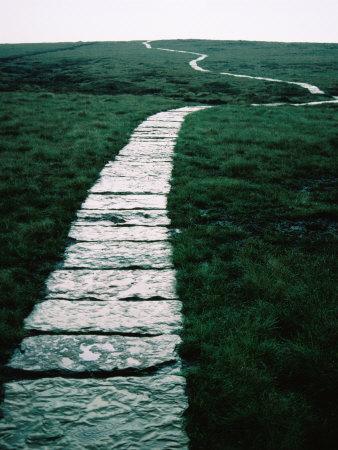 the_path
