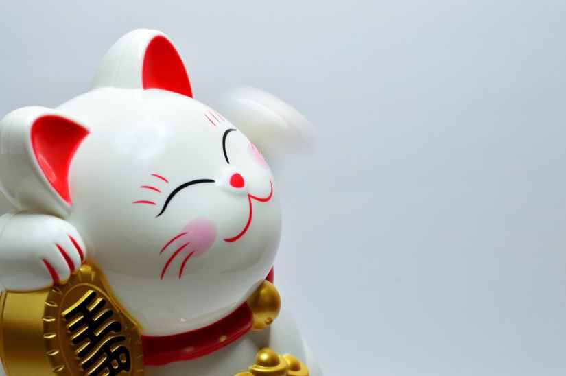 japanese lucky coin cat